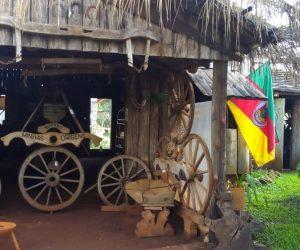 Museu do Borraio