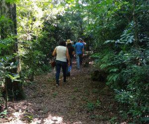 Trilha Aldeia Guarani